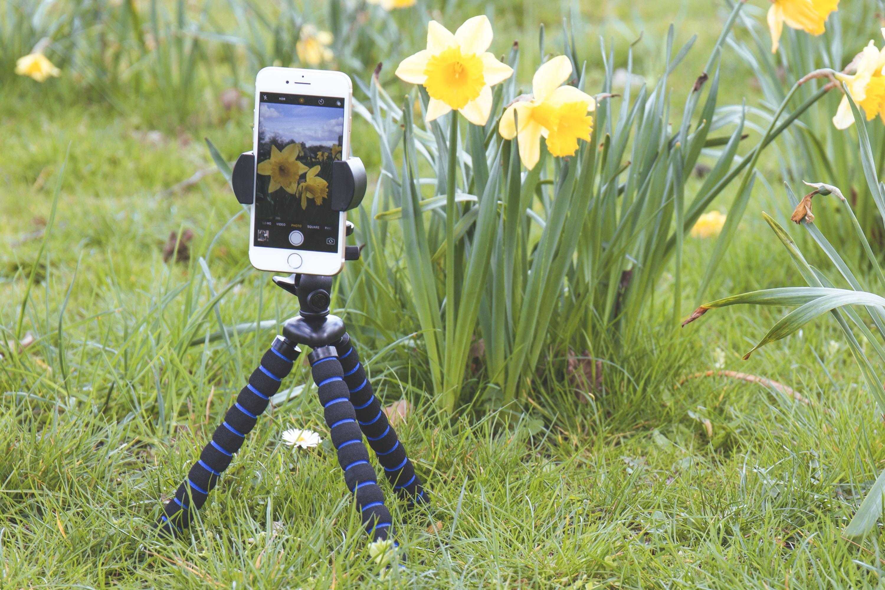 best Tripod Mount BecBoop Arkon